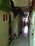 FleaMan old flat